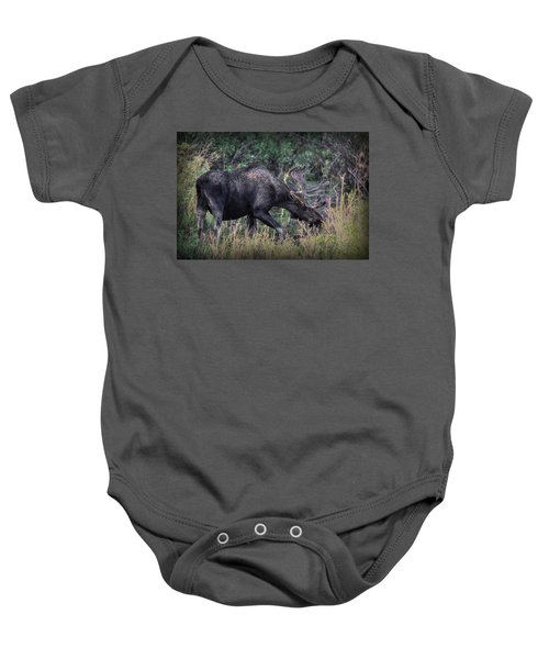 Moose In The Meadow Baby Onesie
