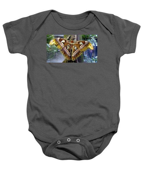Atlas Moth Baby Onesie