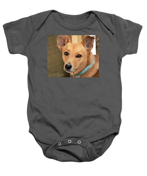 Dog - Cookie One Baby Onesie