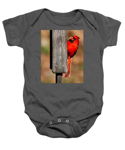 Northern Cardinal Baby Onesie