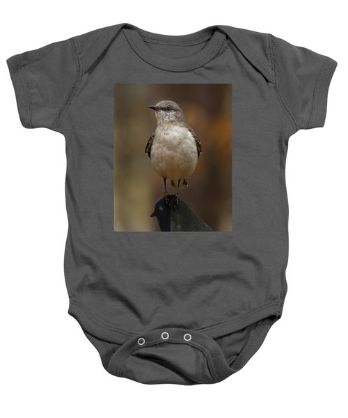 Northern Mockingbird Baby Onesie