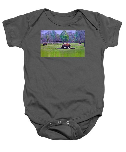 One Bison Family Baby Onesie