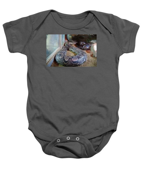 Out Of Africa  Black Snake Baby Onesie