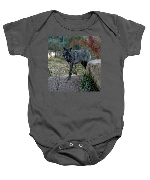 Out Of Africa Black Wolf Baby Onesie