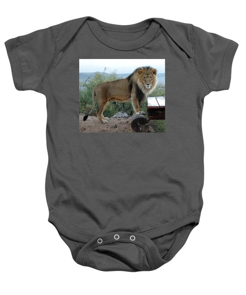 Out Of Africa  Lion 1 Baby Onesie