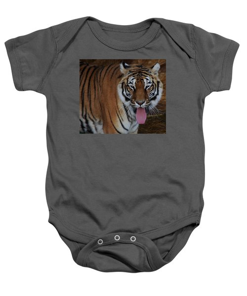 Out Of Africa  Tiger 2 Baby Onesie