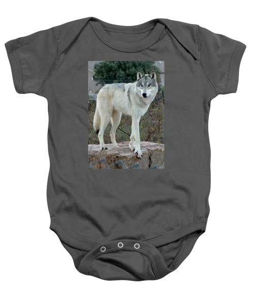 Out Of Africa Wolf  Baby Onesie