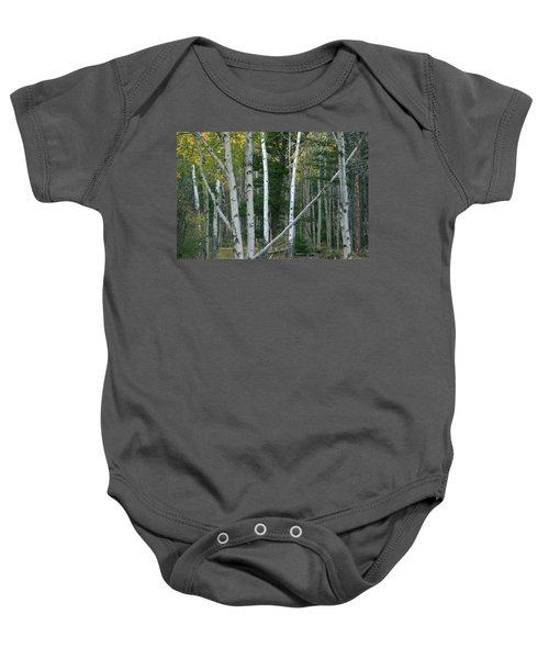 Perfection In Nature Baby Onesie