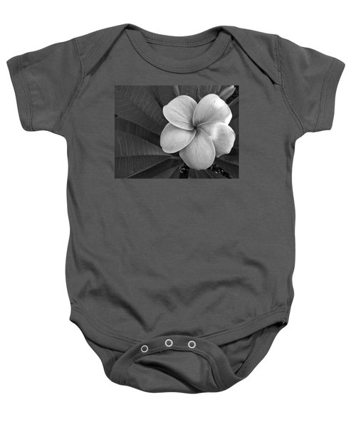 Baby Onesie featuring the photograph Plumeria With Raindrops by Shane Kelly