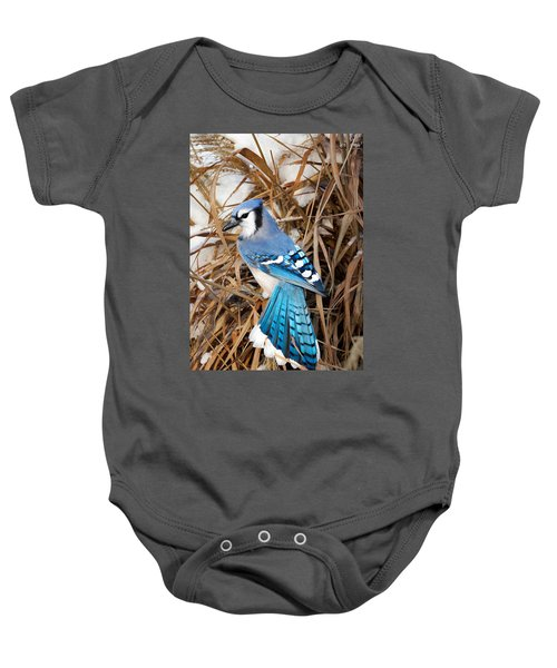 Portrait Of A Blue Jay Baby Onesie by Bill Wakeley