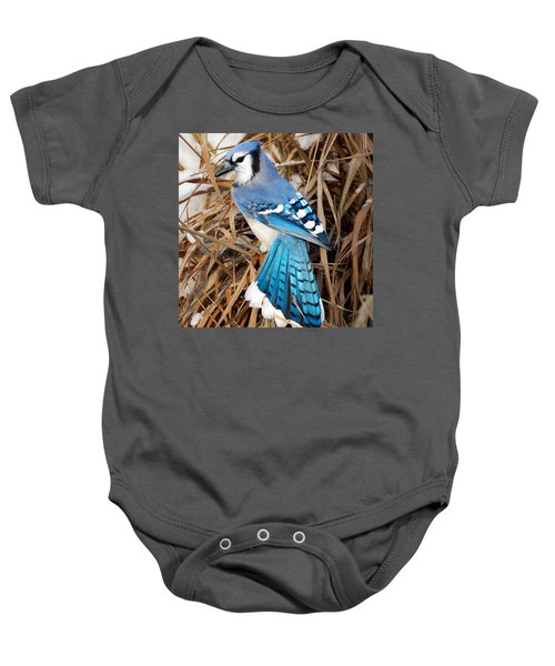 Portrait Of A Blue Jay Square Baby Onesie by Bill Wakeley