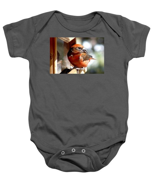 Red Crossbill Baby Onesie by Marilyn Burton