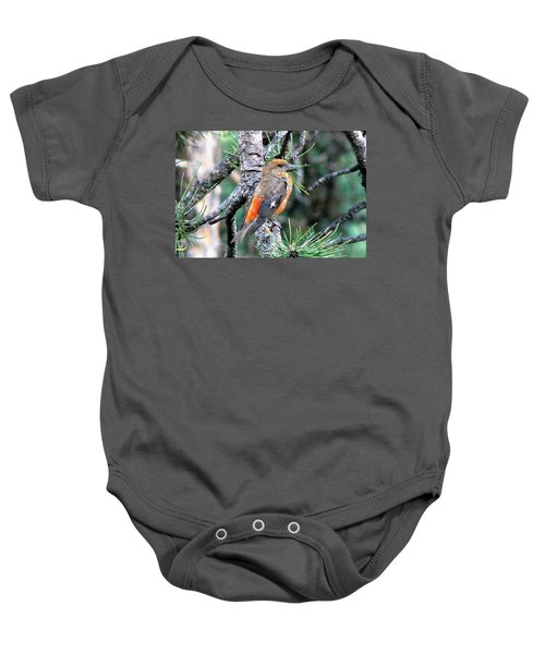 Red Crossbill On Pine Tree Baby Onesie by Marilyn Burton