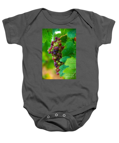 Red Grapes Baby Onesie