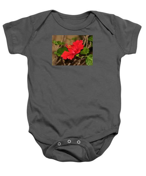 Red Hibiscus Flower Baby Onesie