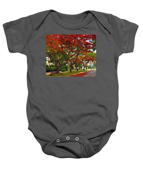 Royal Poinciana Trees Blooming In South Florida Baby Onesie