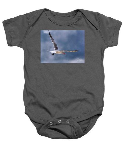 Royal Tern 1 Baby Onesie