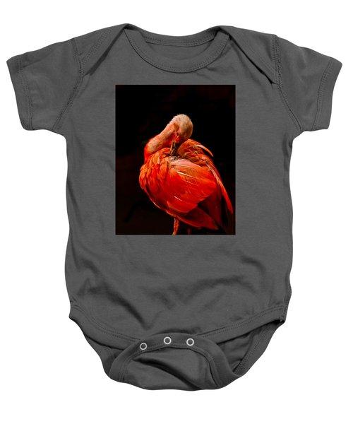 Scarlet Ibis Baby Onesie