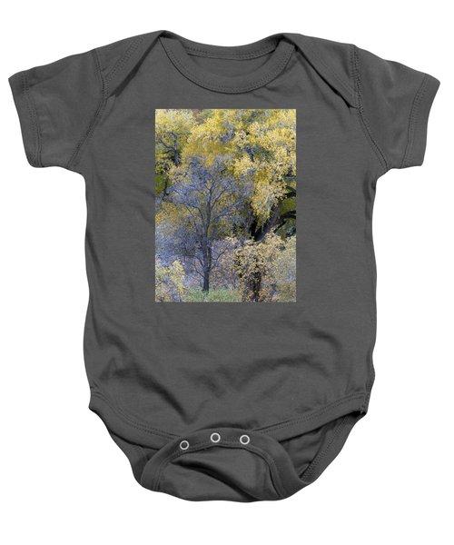 Sedona Fall Color Baby Onesie