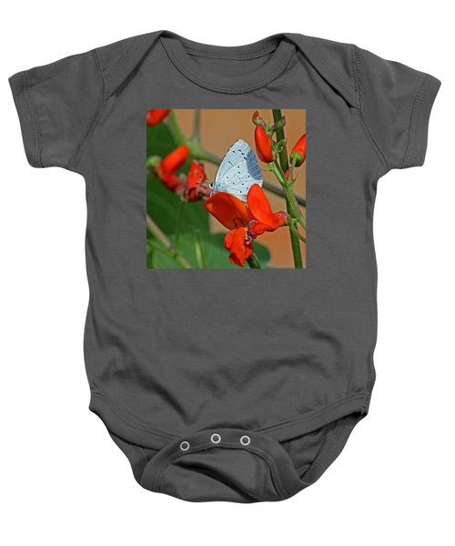 Small Blue Butterfly Baby Onesie