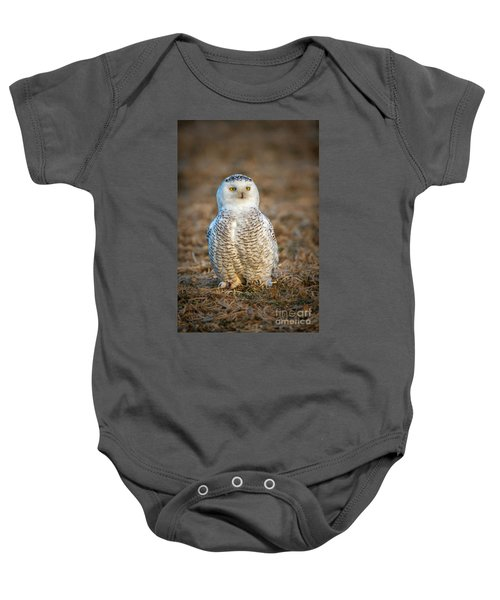 Snowy Owl Baby Onesie