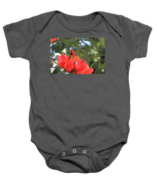 Streak-backed Oriole Baby Onesie