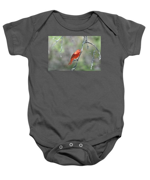 Summer Tanager Baby Onesie