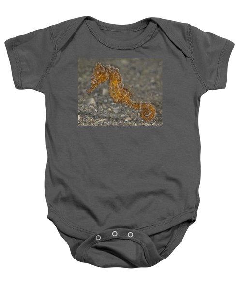 The Baby Seahorse Baby Onesie