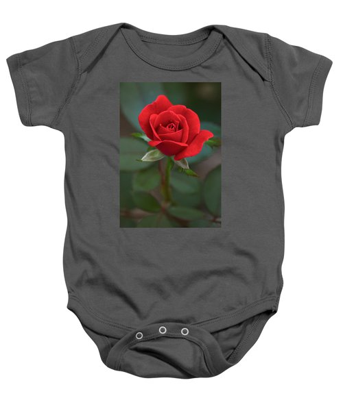 The Perfect Rose Baby Onesie