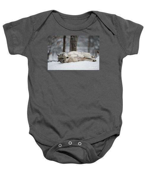 Timber Wolf In Winter Baby Onesie