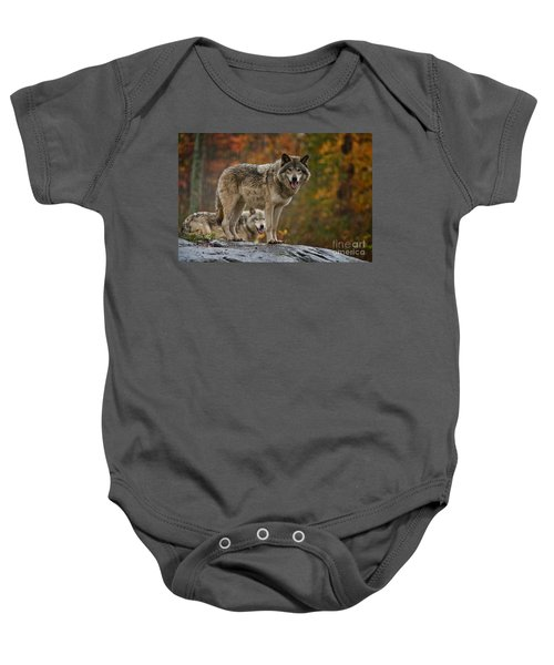 Timber Wolf Pictures 410 Baby Onesie