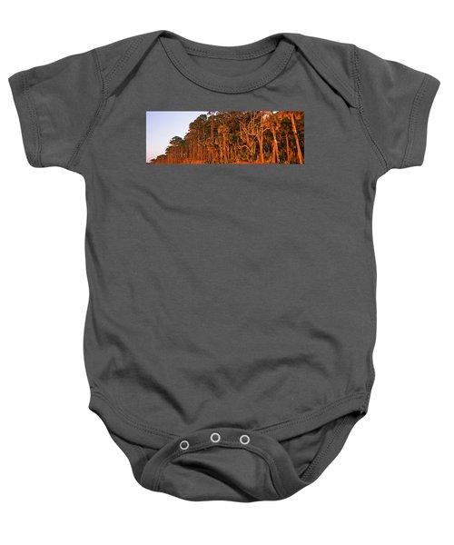 Trees, Hunting Island State Park Baby Onesie