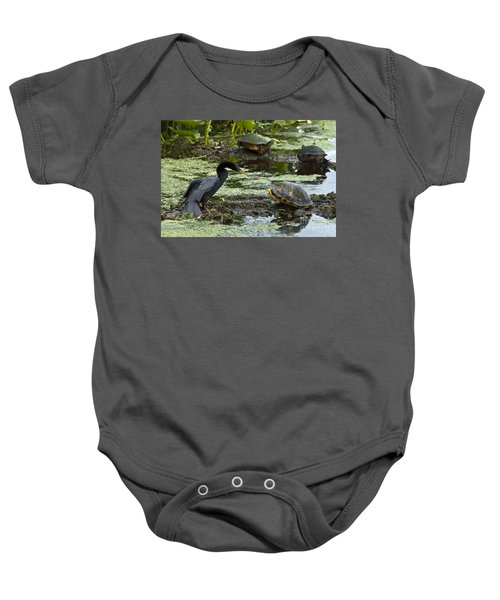 Turtles And Anhinga Baby Onesie by Mark Newman