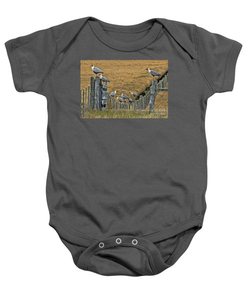 End Of The Road Birds Baby Onesie