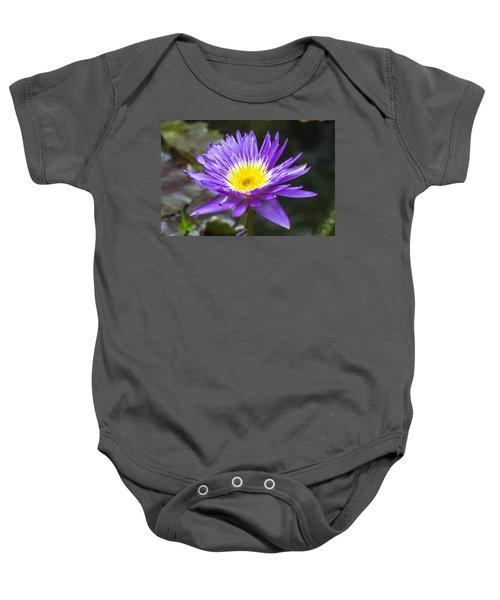 Violet Water Lily Baby Onesie
