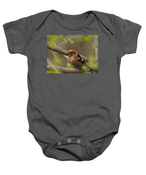 White-winged Crossbill Baby Onesie by James Peterson
