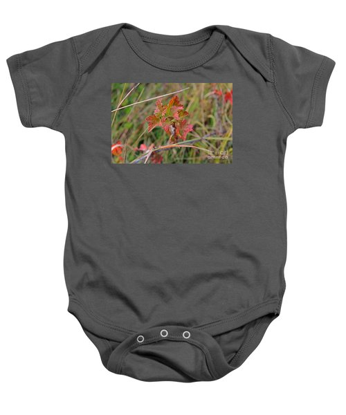 Wild Gooseberry Leaves Baby Onesie
