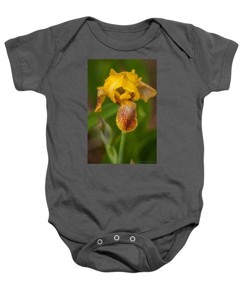 Yellow Bearded Iris Baby Onesie