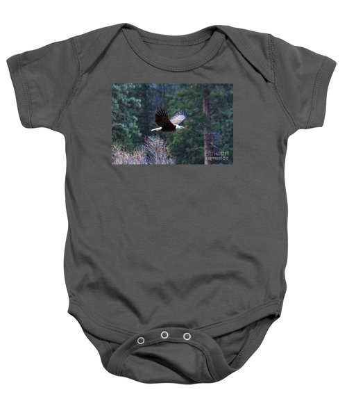 Baby Onesie featuring the photograph Yosemite Bald Eagle by Vincent Bonafede