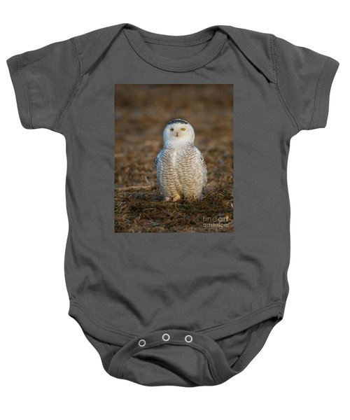 Young Snowy Owl Baby Onesie