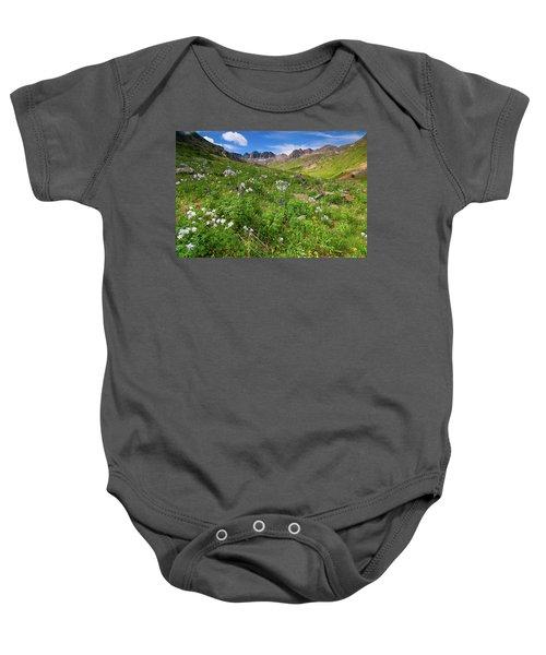American Basin Wildflowers Baby Onesie
