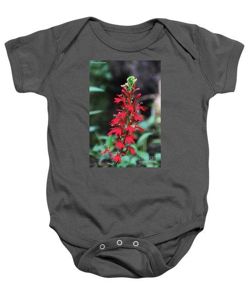 Cardinal Flower Baby Onesie