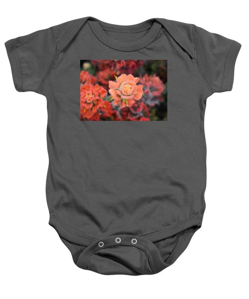 Coastline Color Baby Onesie