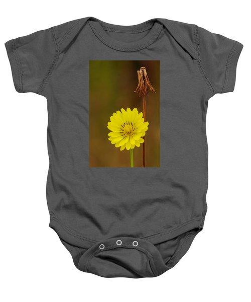 False Dandelion Flower With Wilted Fruit Baby Onesie