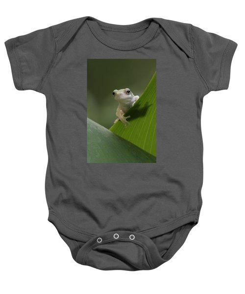 Juvenile Grey Treefrog Baby Onesie