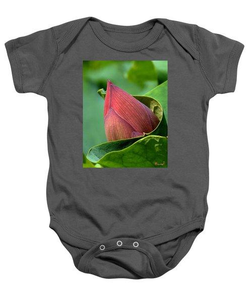 Lotus Bud--bud In A Blanket Dl049 Baby Onesie