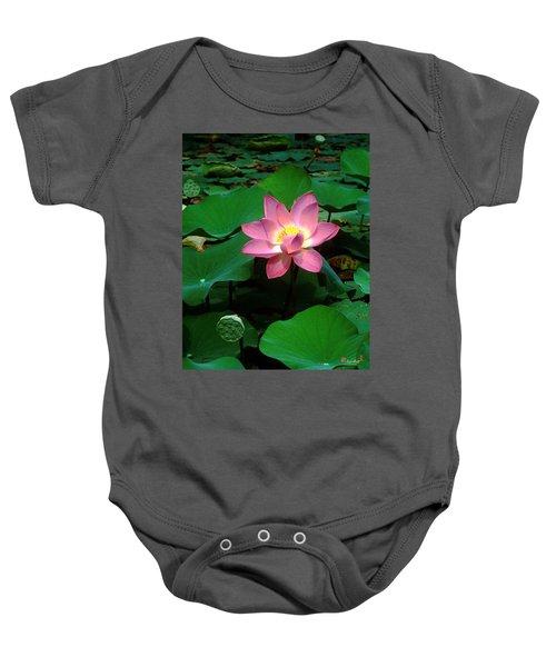 Lotus Flower And Capsule 24a Baby Onesie