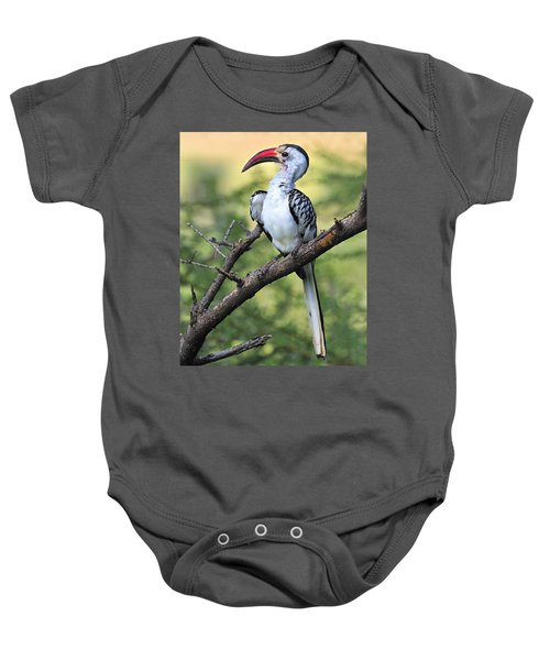 Red-billed Hornbill Baby Onesie by Tony Beck
