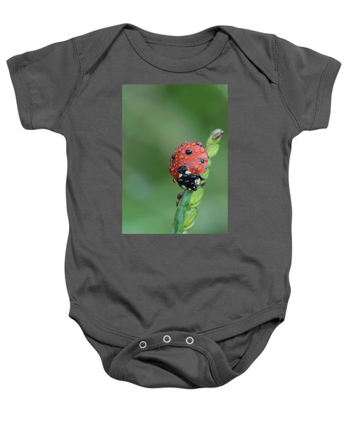 Seven-spotted Lady Beetle On Grass With Dew Baby Onesie