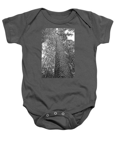 Tall Tree With Sunshine Baby Onesie